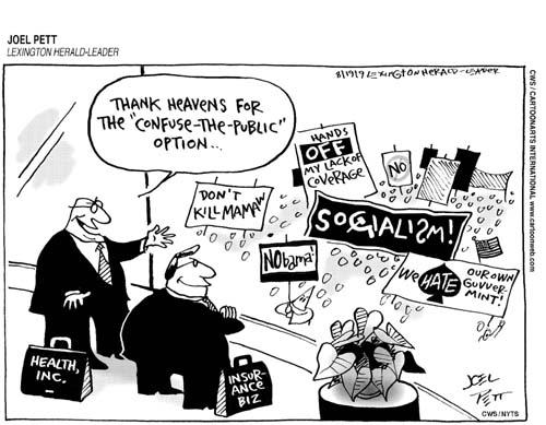 confuse-the-public-option