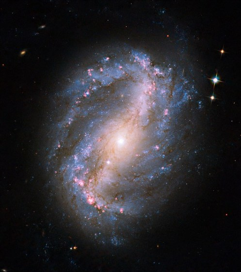Barred Spiral Galaxy NGC 6217: This image is the first of a celestial object taken with the newly repaired Advanced Camera for Surveys (ACS) aboard the Hubble Space Telescope
