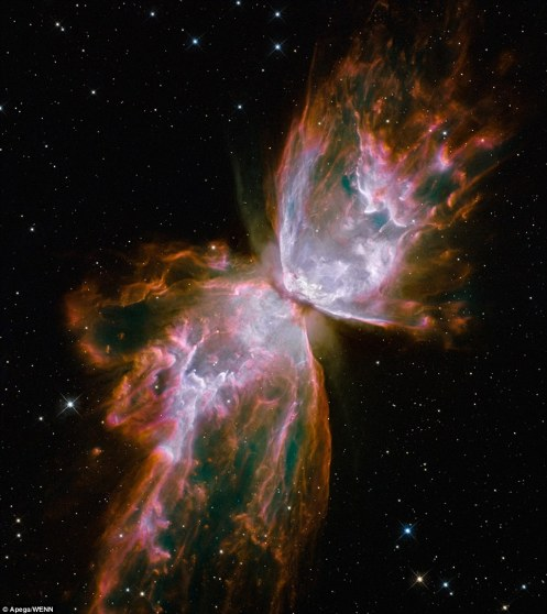 This celestial object - NGC 6302 - looks like a delicate butterfly but is far from serene: What resemble dainty butterfly wings are actually boiling cauldrons of gas heated to more than 36,000 degrees Fahrenheit